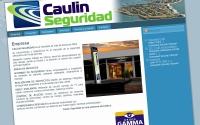 Caulin Seguridad - Punta del Este